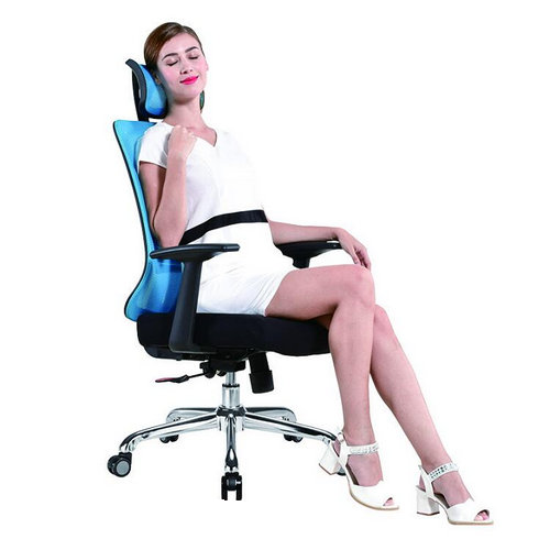 Affordable Design Best Quality Ergonomic Computer Desk Mesh Office Chair With Fixed Armrests -1