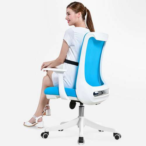 Professional staff computer office desk mid back task chair imported mesh best ergonomic conference chairs -2